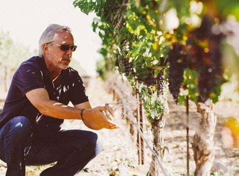 Margerum Wine Company Winery
