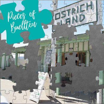Buellton Puzzles